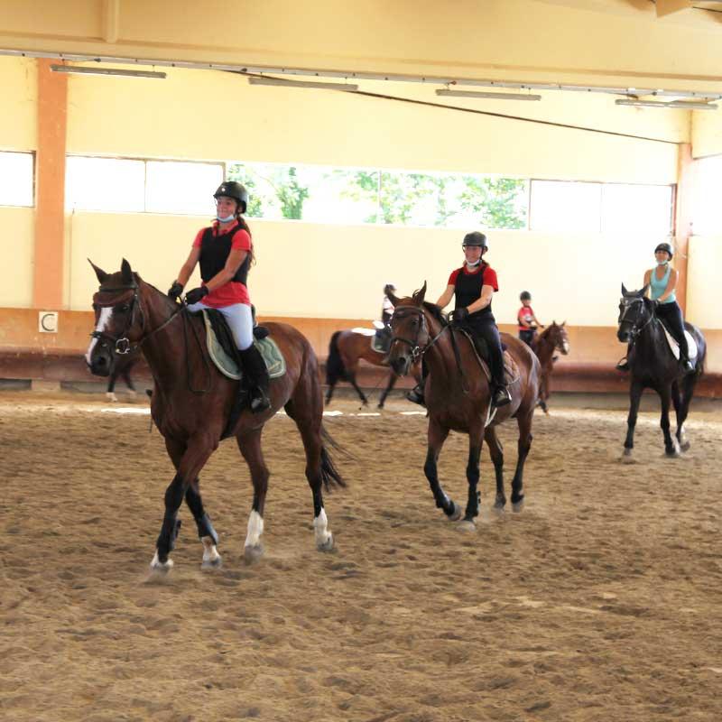 scuola-di-equitazione-belloli-centro-ippico-scuola-bambini