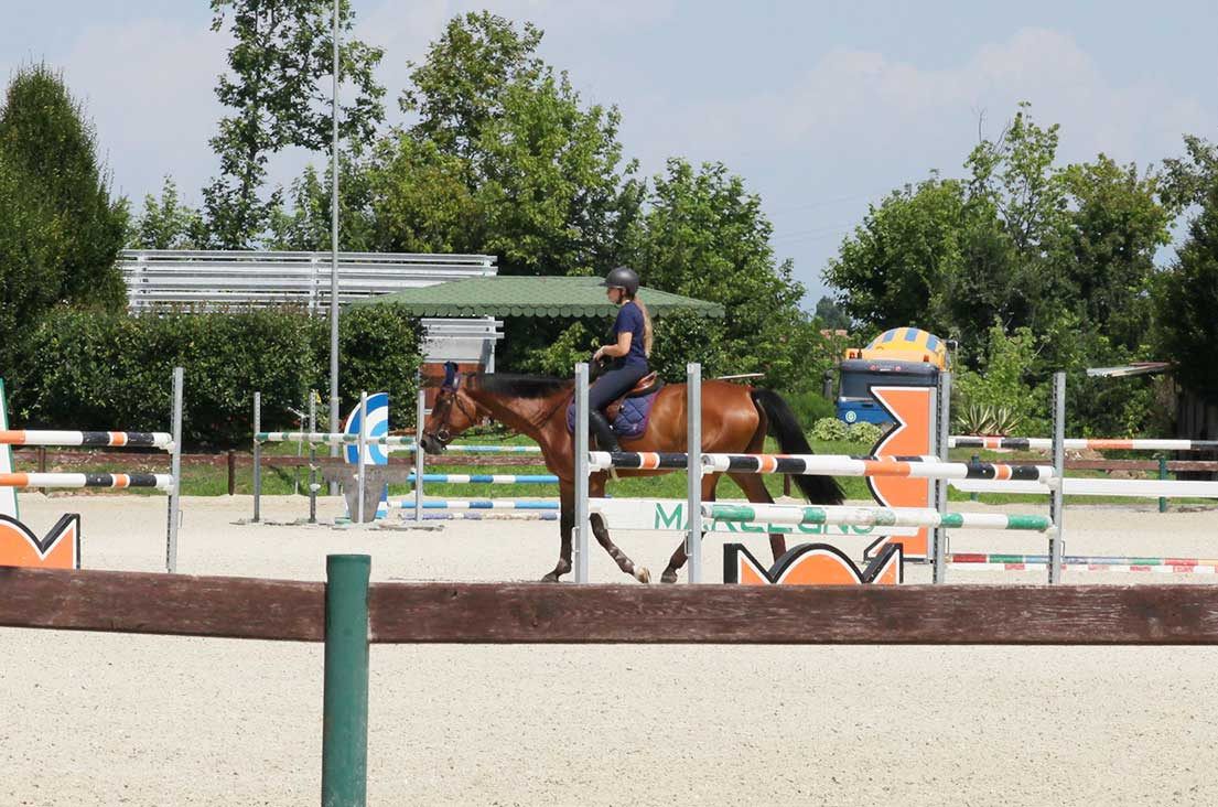 scuola-di-equitazione-belloli